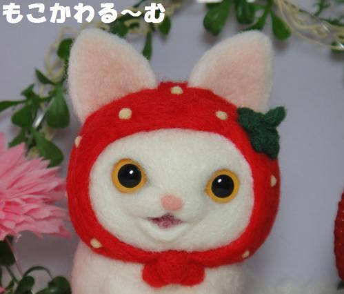 苺マト白猫2