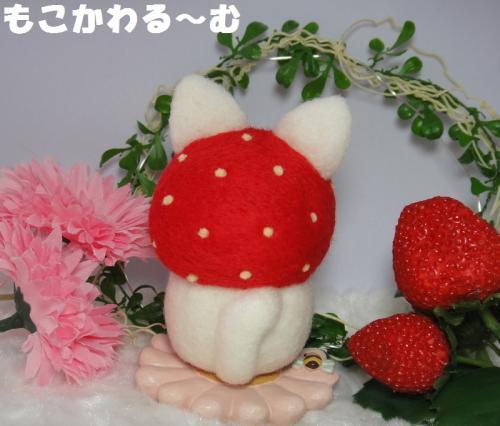 苺マト白猫4