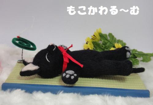 黒猫ねんね3