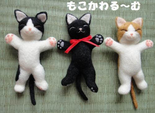 黒猫ねんね5