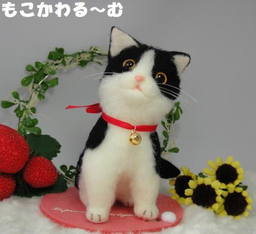 子猫はちわれ7