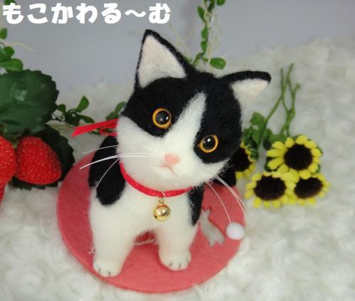 子猫はちわれ8