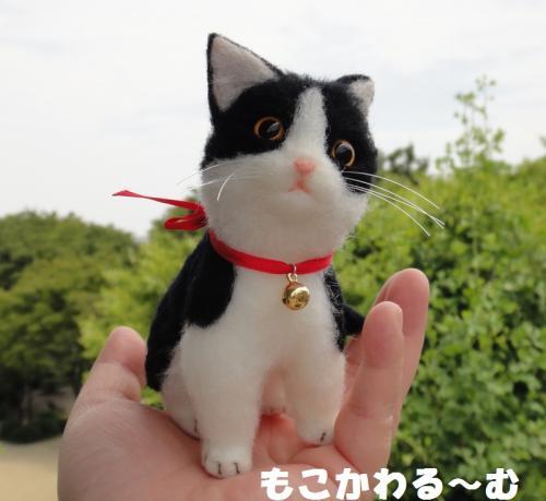 子猫はちわれ9