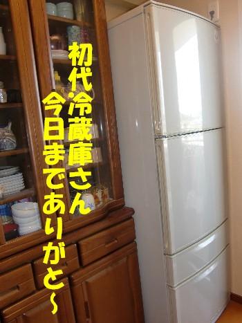 旧冷蔵庫さん
