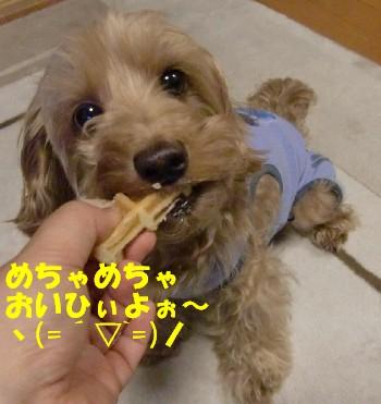 スペシャルおやつモコ