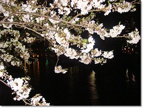 2010-04-031