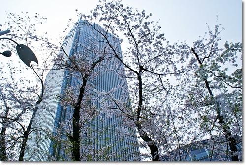 2010-04-043