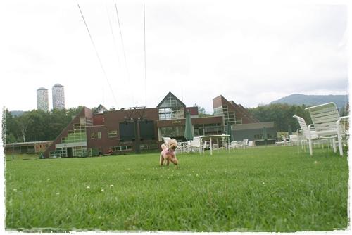 2010-0913-016