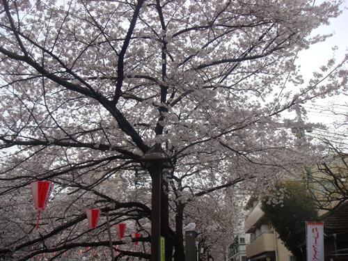 2011-0411-09
