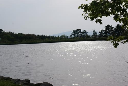 2011-0528-12