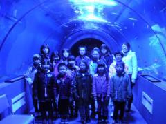 トンネル水槽①