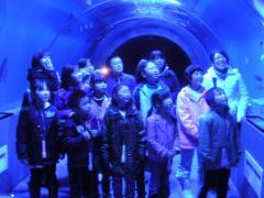 トンネル水槽②