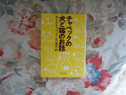 inuto-nekono-ohanashi.jpg