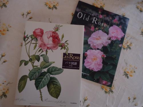 oldrose-book.jpg