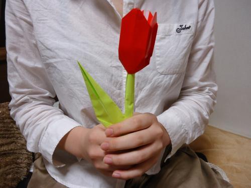 origamino-turip.jpg