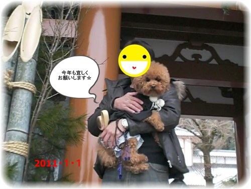2011syougatu.jpg