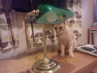 ランプとモク2