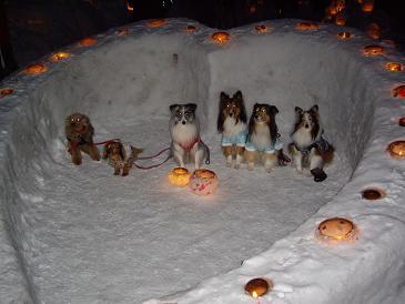 小樽雪あかり3