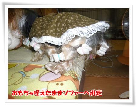 003_20111219195009.jpg