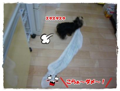 002 2010年11月19日