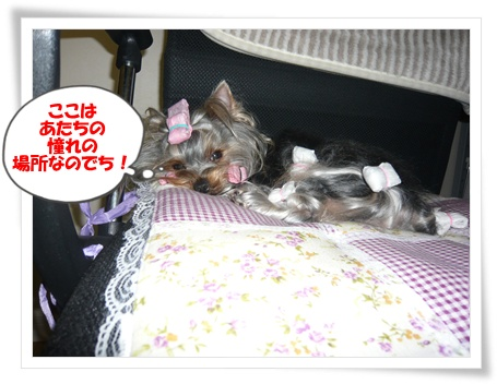 012 2011年10月11日