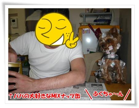 005 2011年12月7日