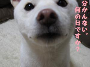 kinennbi (4)