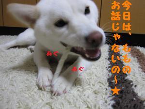 IMG_3477_convert_20100608174459.jpg