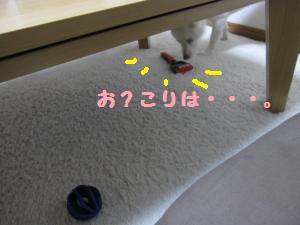 IMG_3549_convert_20100623184113.jpg