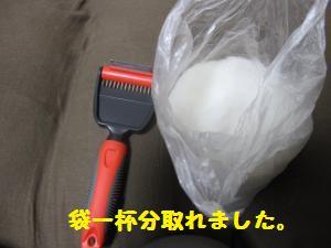 IMG_3550_convert_20100623184137.jpg