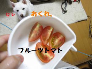 IMG_3630_convert_20100709185352.jpg