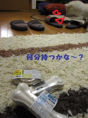 IMG_4350_convert_20101226120011.jpg