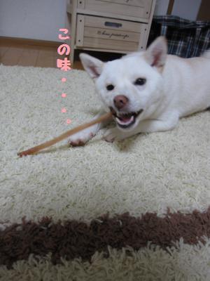 akiresu1.jpg