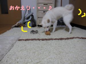 onaoshi4.jpg