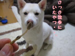 tukushi3.jpg