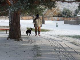 snow303.jpg