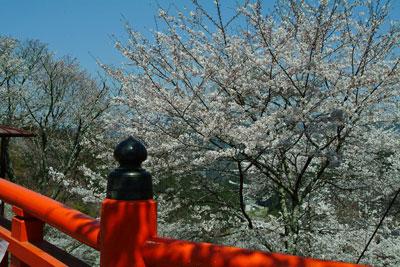 2011-04-13_0587.jpg