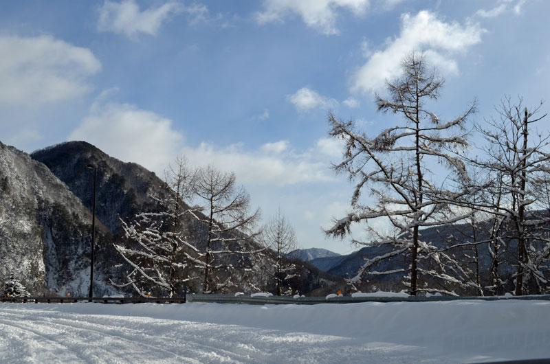 DSC_0851雪景色