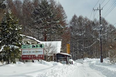 DSC_0825雪道