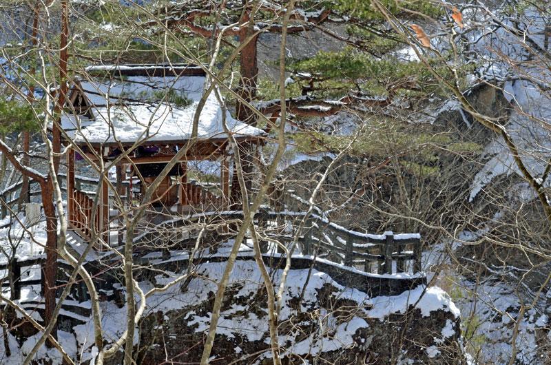 DSC_0938神社