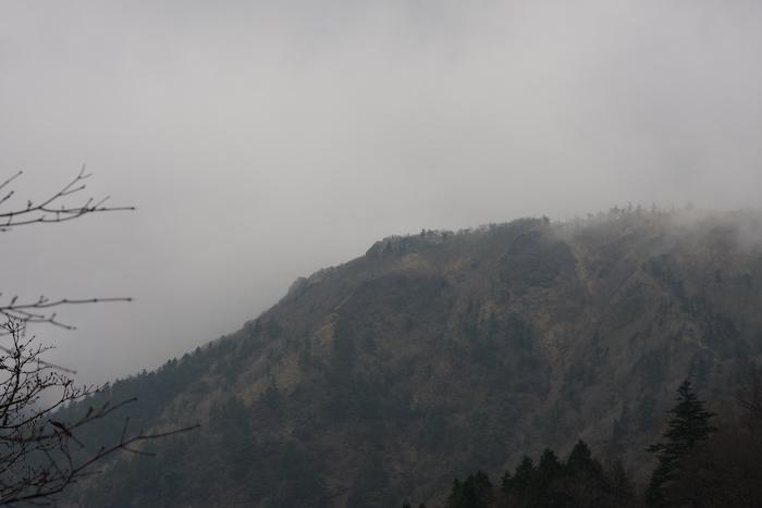 20111113-IMG_4315.jpg