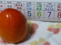 岡山エリアの地デジ番組チャンネル一覧1