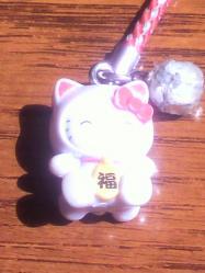追い出し猫「ふく」2011032813420000