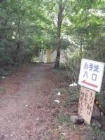 本栖湖2-10