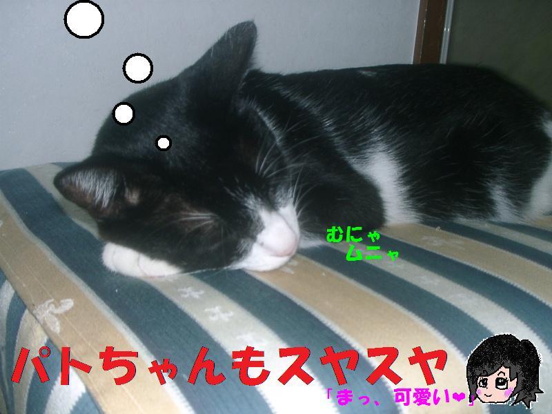 可愛い寝顔、うふッ#10084;