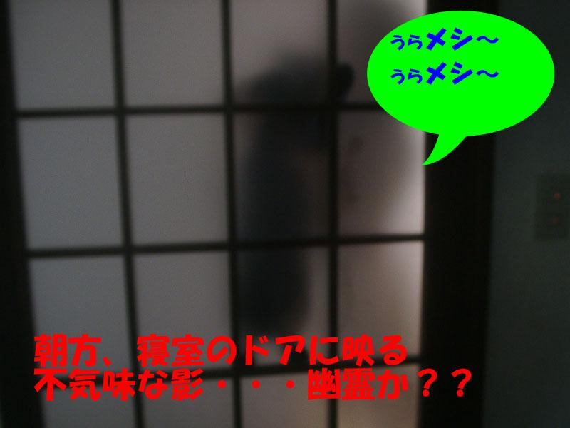 幽霊か??