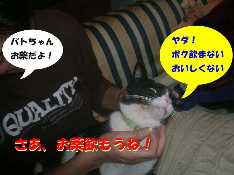 パト異変5