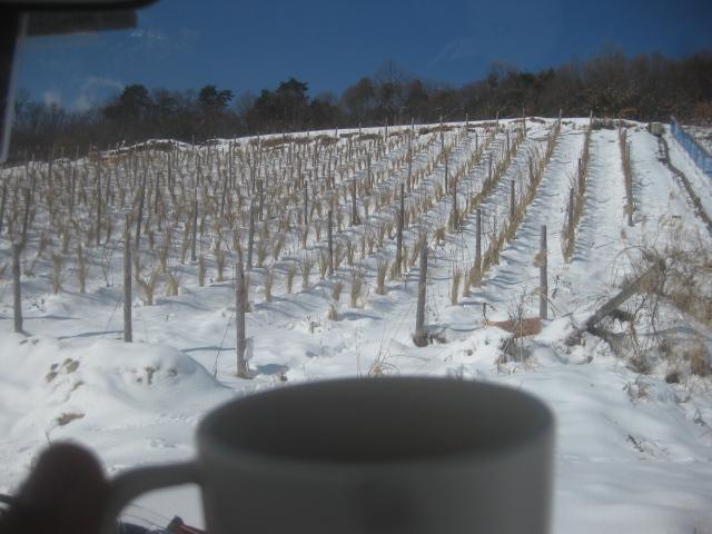 雪見カフェ