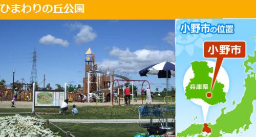 himawari.jpg