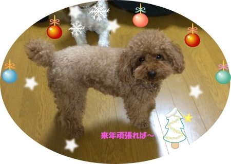 クリスマス風